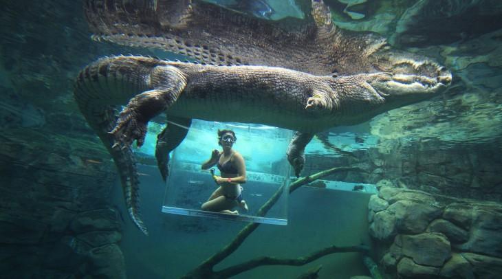 Crazy tourist activities
